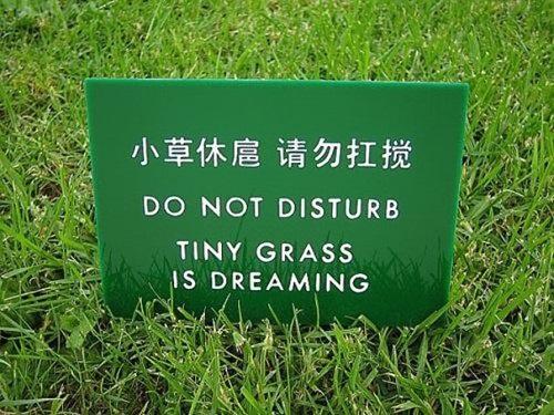 Lỗi trong dịch thuật
